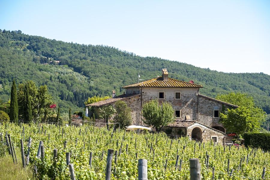 Bauernhof Fattoria Lavacchio Pontassieve (Florenz) - Toskana