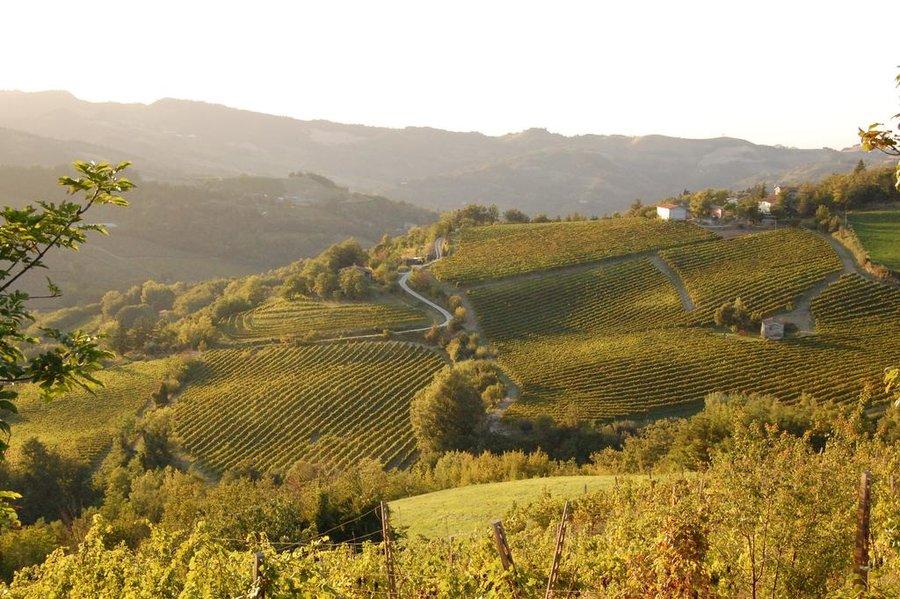 Agriturismo Villa Podere Quartarola Modigliana - (Forlì-Cesena) - Emilia Romagna