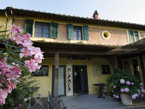 Alpaca Country House - Pontedera
