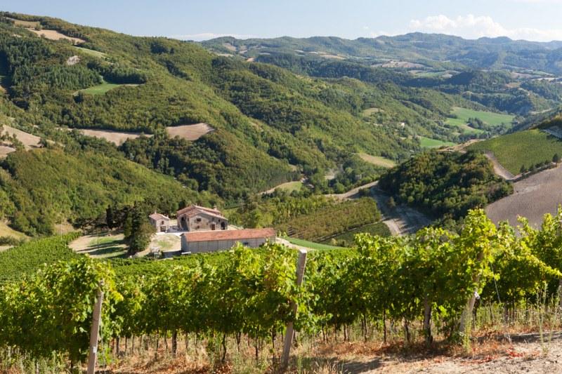 Agriturismo C 224 Gianna E Borgorosso Tredozio Forl 236