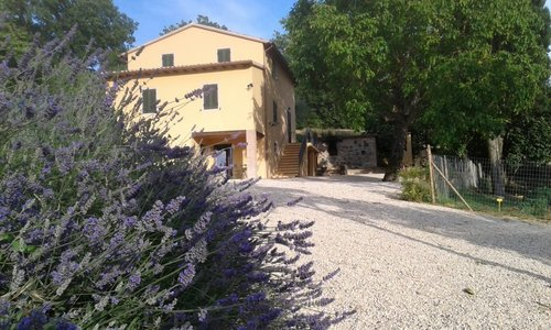 Accommodation Il Truffarello