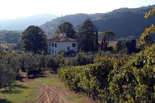 Farmhouse with pool in the heart of Chianti Rufina - Rufina