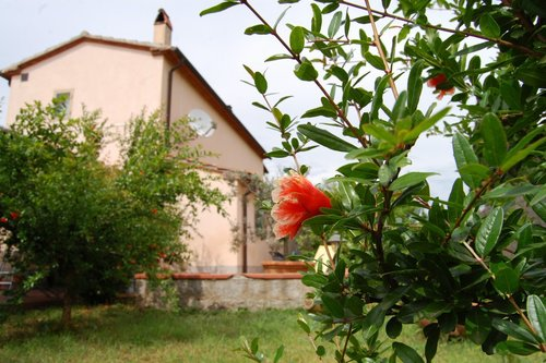 Accommodation Farmhouse in the countryside of Castagneto Carducc