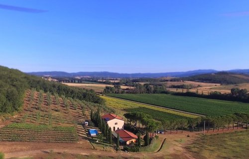 Organic farm among history, seaside and sport - Gavorrano