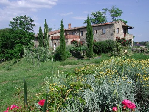 Farm at 10km away from San Gimignano - Gambassi Terme