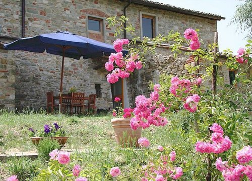 Organic farmhouse in the heart of Chianti - Greve in Chianti