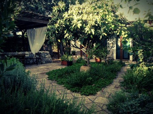 Organic farm surrounded by green and in the heart of Salento - Carpignano Salentino