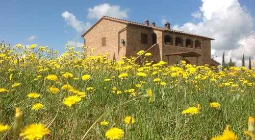 Accommodation Agriturismo among the Crete Senesi, Siena