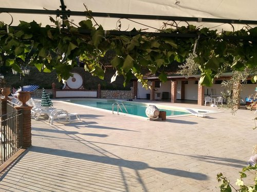 Agricultural farm with pool and restaurant - Reitano
