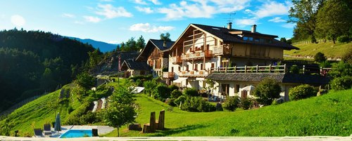 Maso 5 flowers of Val Gardena with beautiful apartments - Laion
