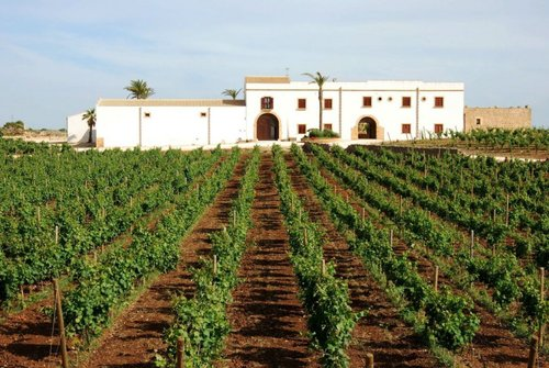 Wine resort with restaurant and swimming pool in Marsala - Marsala