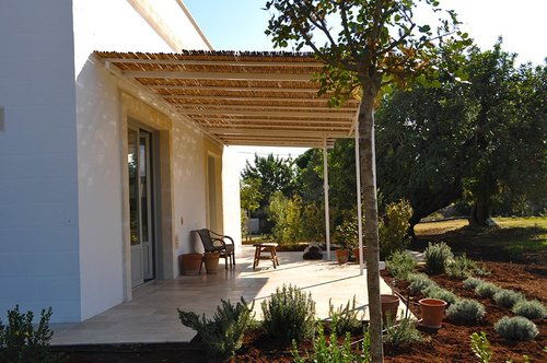Typical puglia farmhouse between olive groves at 1km from the sea - Monopoli