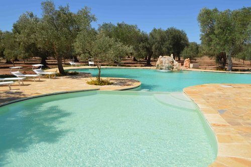 Accommodation Masseria with centuries-old olive trees a few mile