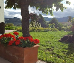 Authentic and genuine, comfortable and romantic farmhouse - Capestrano