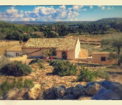 Organic farmhouse in nature reserve near the sea - Vittoria