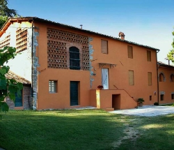 Old farmhouse surrounded by olive groves and vineyards - Capannori