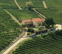 Farmhouse in the heart of Barolo's land - Barolo