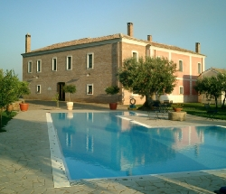 Farmhouse surrounded by green olive trees - Pianopoli