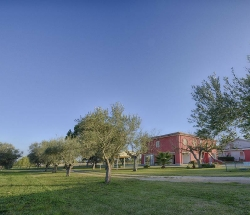 Ideal farmhouse for work and families - Aprilia