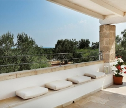 Farmhouse immersed in the plain of ancient olive trees - Carovigno