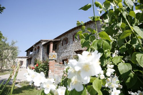 Apartment immersed in the countryside in a farmhouse - Gaiole in Chianti