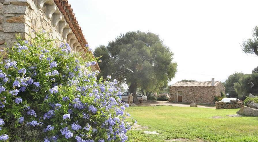 Agriturismo spridda a arzachena olbia tempio sardegna for Agriturismo sardegna