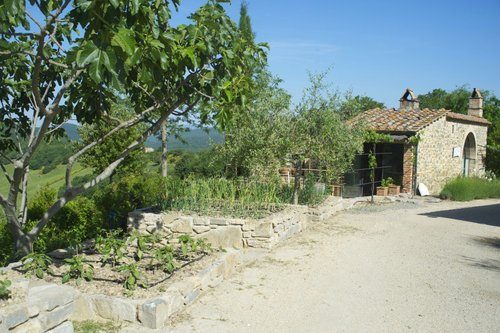Ancient home with panoramic terrace and pool - Casole d'Elsa