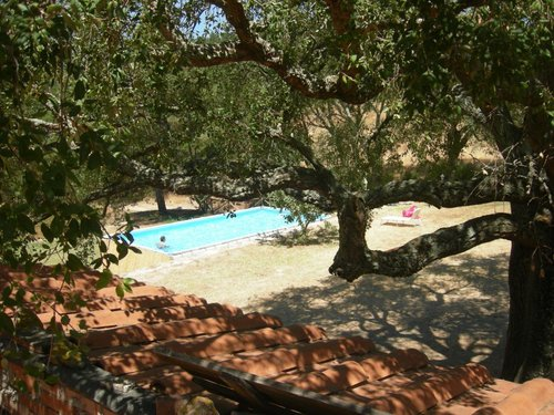 Holidays in the quiet of the high Maremma - Roccastrada