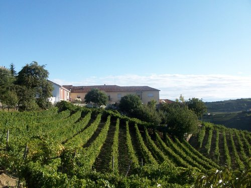 Farmhouse and cellar in the heart of Langhe - Trezzo Tinella