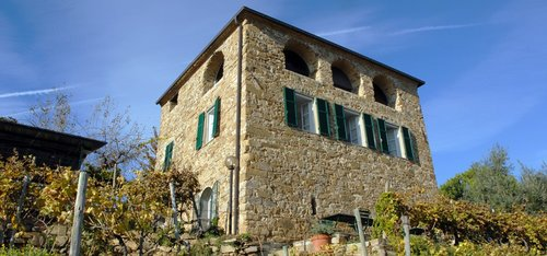 Lovely stays in a historic wine-making company - Dolceacqua