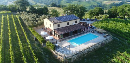 between vineyards ,with swimming pool and restaurant - Loro Piceno