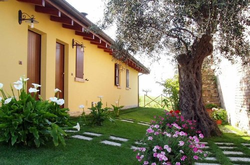 Farmhouse with apartments 7 km from the sea - Notaresco