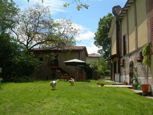 Pan di Legno: holiday in the green between gullies and vineyards - Valsamoggia