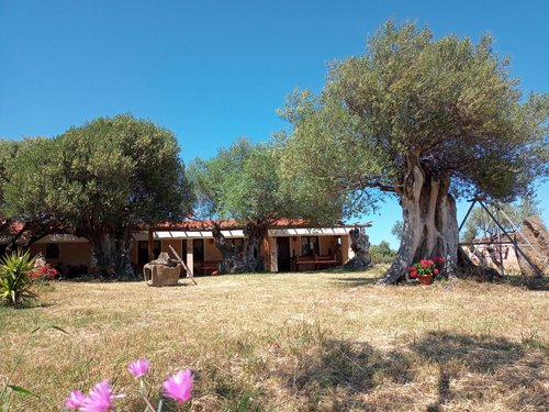 Rooms in bio farm near to beautiful sea of Cala Gonone - Dorgali