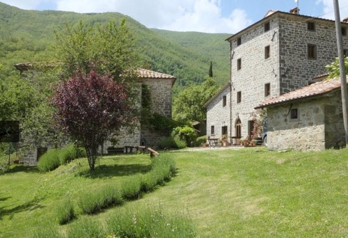 Organic farm surrounded by nature in Tuscany - Caprese Michelangelo