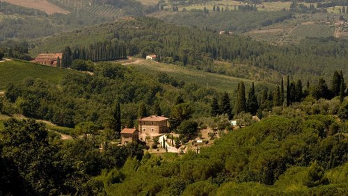 Farmhouse among olive groves and vineyards just 12 km from Florence - Bagno a Ripoli