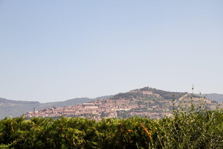 Resort il giardino degli ulivi trinitapoli apulien