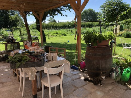 Venetian Villa in an organic farm on the Riviera del Brenta - Mira