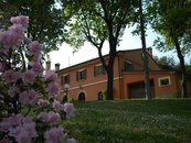 Struttura intera - Agriturismo Farmhouse La Meridiana Holiday House Bed and Breakfast