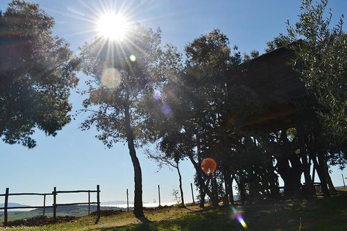 Tuscany Tree House - Tree house sea view Argentario - Orbetello