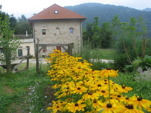 Ortoalpino - Eco-sustainable farm in the Alps - Trichiana